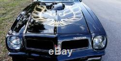 76-78 BANDIT TRANS AM SPECIAL EDITION COMPLETE GOLD DECAL KIT w STRIPES -US MADE
